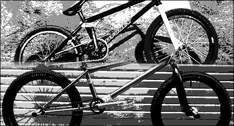 bike check zen bmx バイクチェック